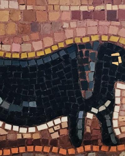 Mosaic Marvericks